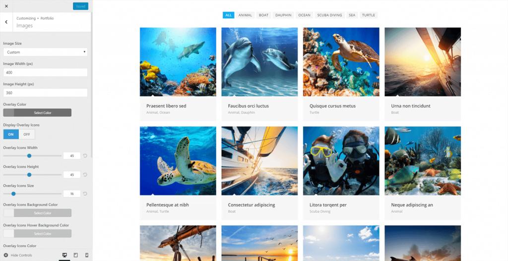 Portfolio OceanWP WordPress