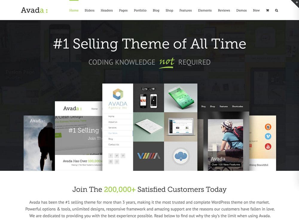 Migliori temi WordPress a pagamento Avada