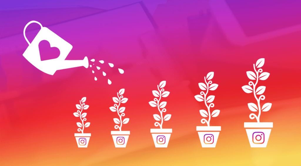 servizi crescita instagram