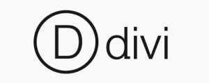 divi theme logo